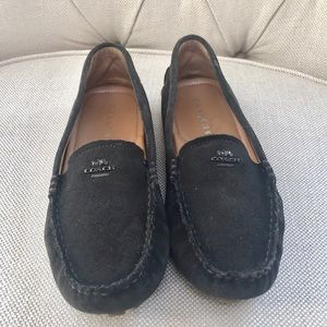 Coach Amber Classic Suede Loafers